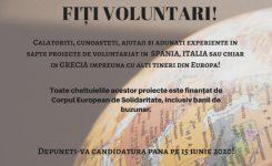 Voluntariat în Europa (exclusiv post-pandemie)