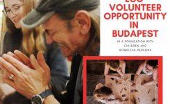 Önkéntest keresünk Budapestre!